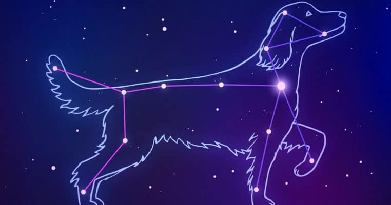 Canis Major the Top Dog Constellation