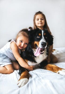 Girls on the bed with Bernese Mountain Dog