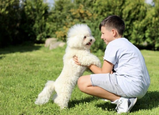 The boy with the dog playing in the garden.