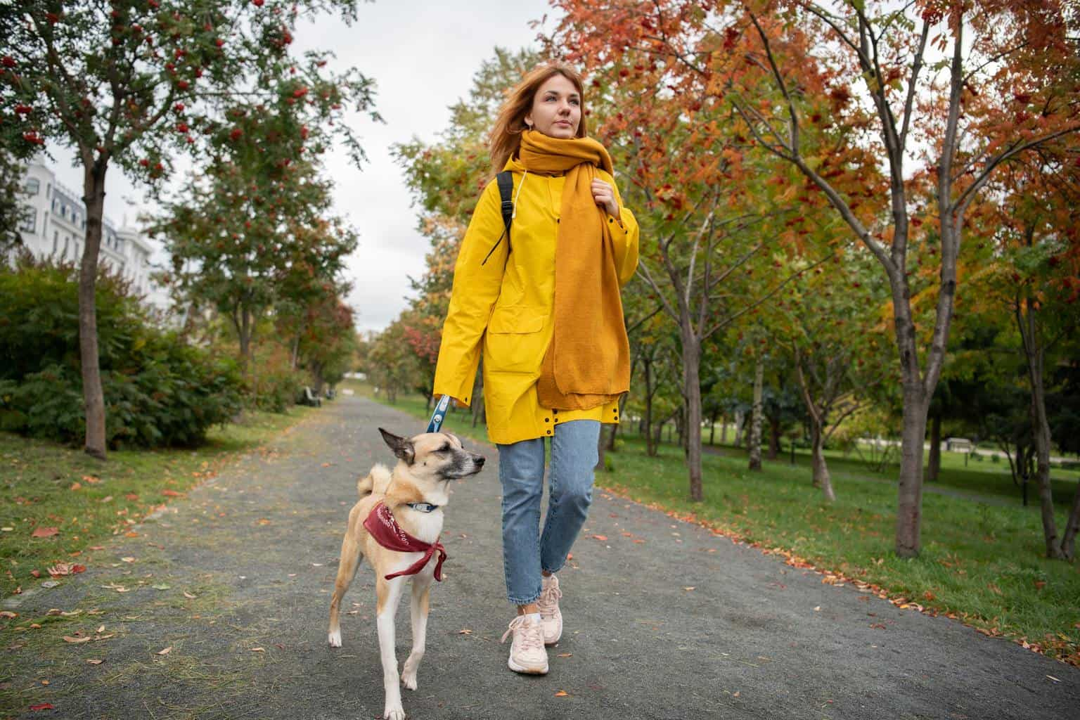 Young lady walking with dog
