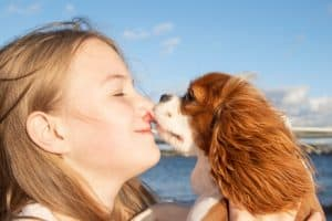 Girl plays her dog on beach at sunny day. Portrait of happy girl and her puppy Cavalier King Charles